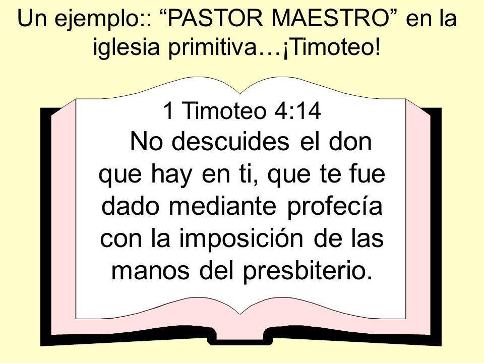 Un ejemplo:: PASTOR MAESTRO en la iglesia primitiva…¡Timoteo!