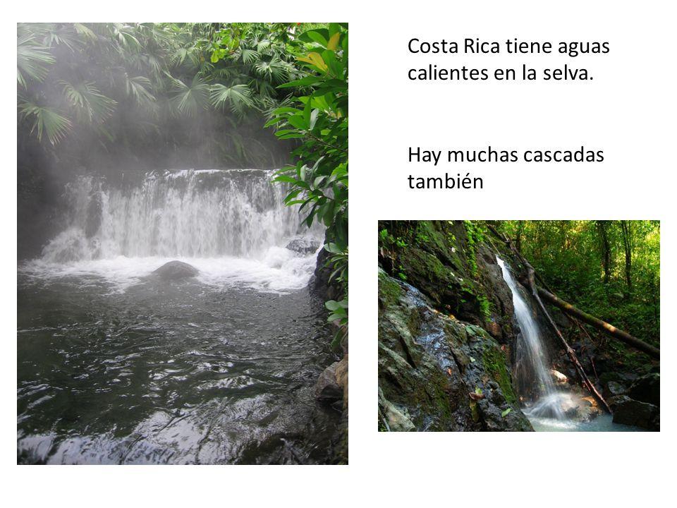 Costa Rica tiene aguas calientes en la selva.