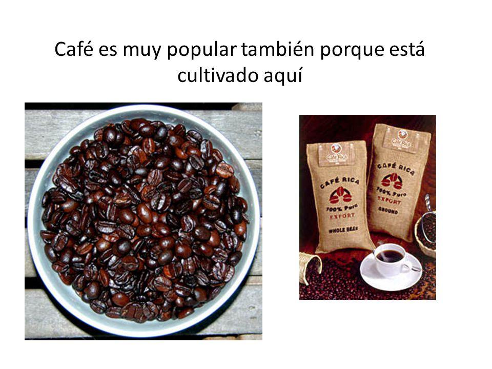 Café es muy popular también porque está cultivado aquí