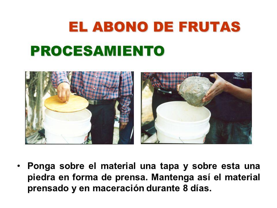 PROCESAMIENTO EL ABONO DE FRUTAS