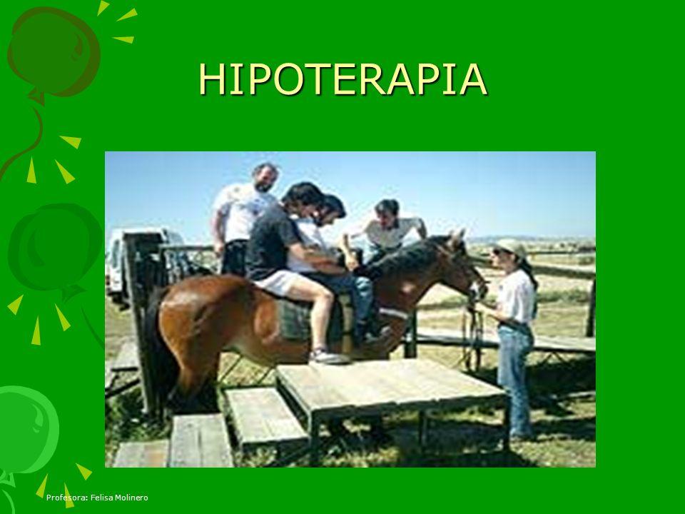 HIPOTERAPIA Profesora: Felisa Molinero