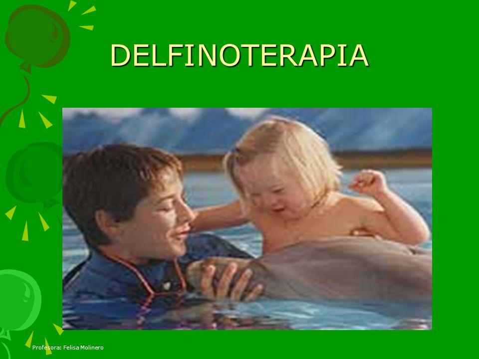 DELFINOTERAPIA Profesora: Felisa Molinero