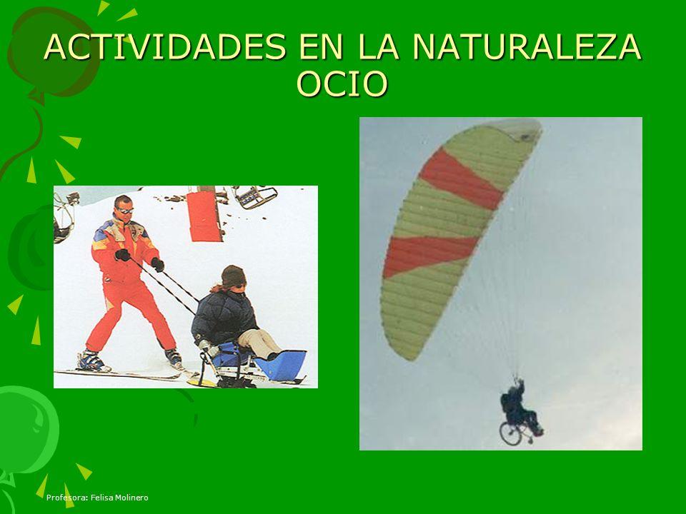 ACTIVIDADES EN LA NATURALEZA OCIO