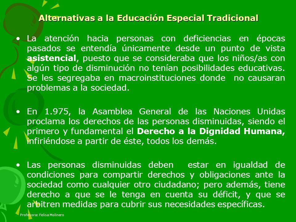 Alternativas a la Educación Especial Tradicional