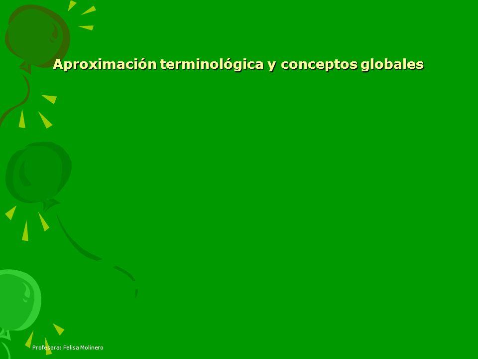 Aproximación terminológica y conceptos globales