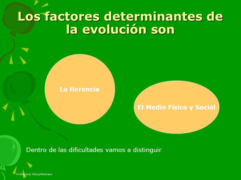 Los factores determinantes de la evolución son