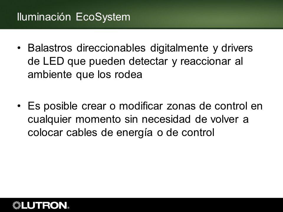 Iluminación EcoSystem