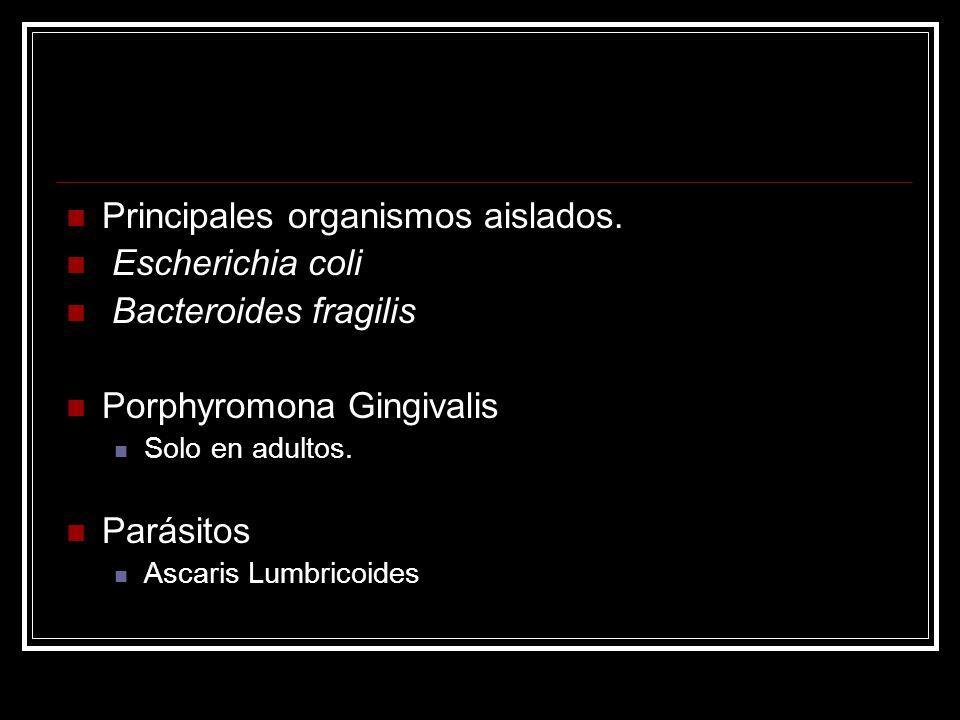 Principales organismos aislados. Escherichia coli Bacteroides fragilis