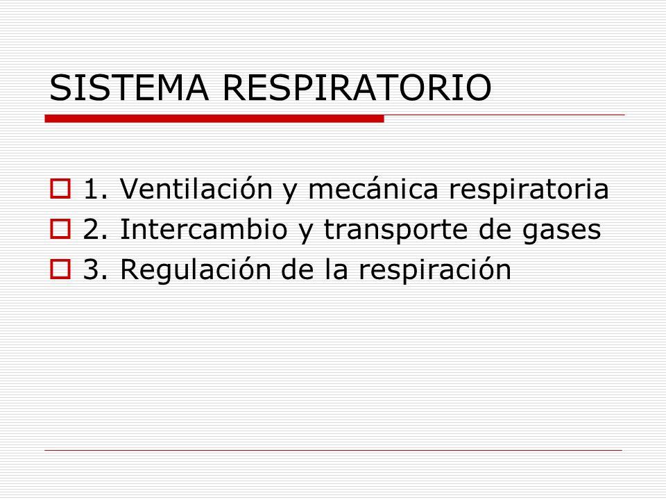SISTEMA RESPIRATORIO 1. Ventilación y mecánica respiratoria