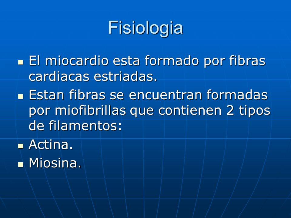 Fisiologia El miocardio esta formado por fibras cardiacas estriadas.
