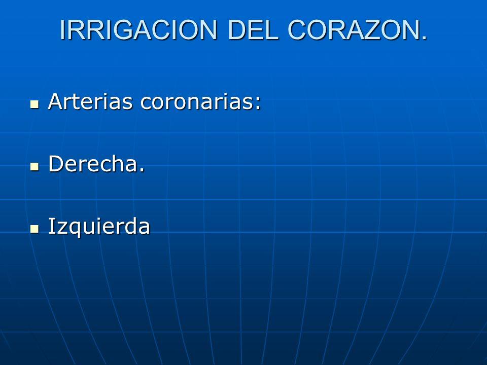 IRRIGACION DEL CORAZON.