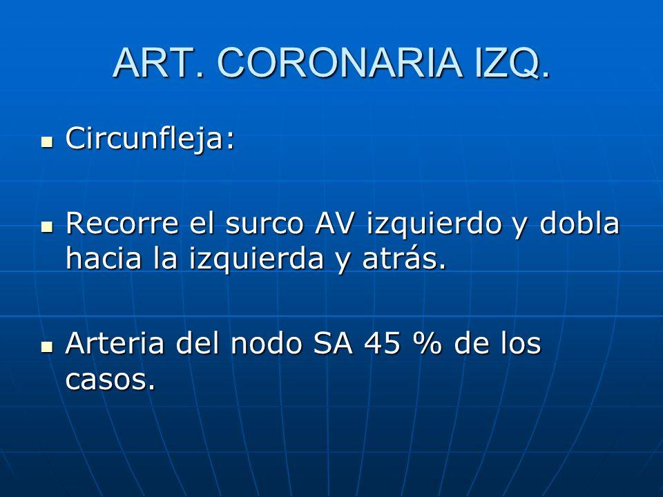 ART. CORONARIA IZQ. Circunfleja: