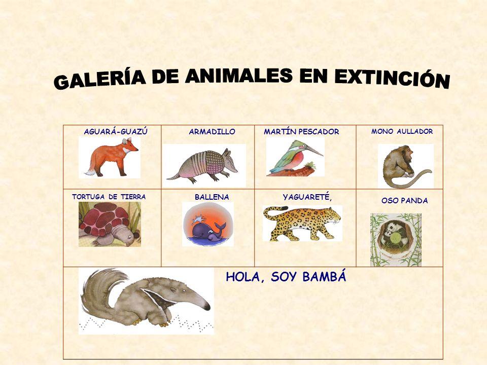 GALERÍA DE ANIMALES EN EXTINCIÓN