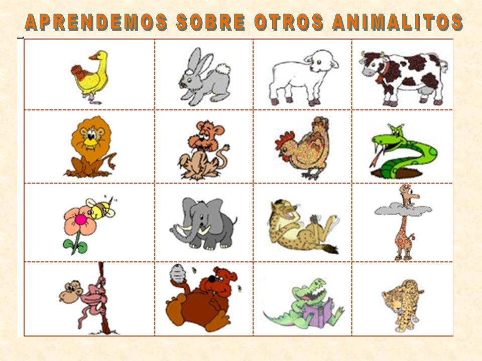 APRENDEMOS SOBRE OTROS ANIMALITOS