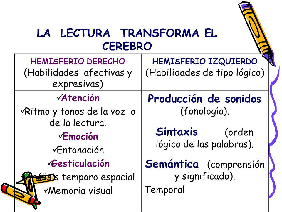 LA LECTURA TRANSFORMA EL CEREBRO