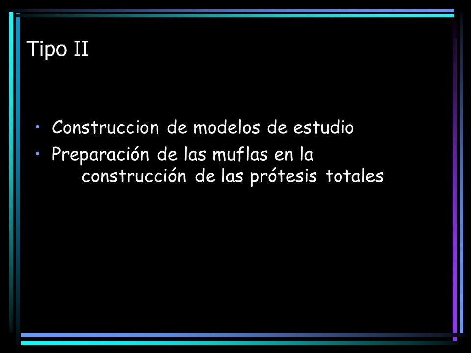 Tipo II Construccion de modelos de estudio