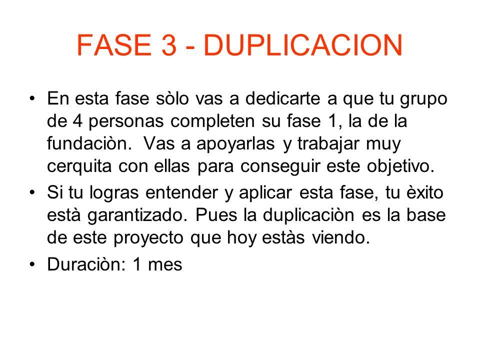 FASE 3 - DUPLICACION