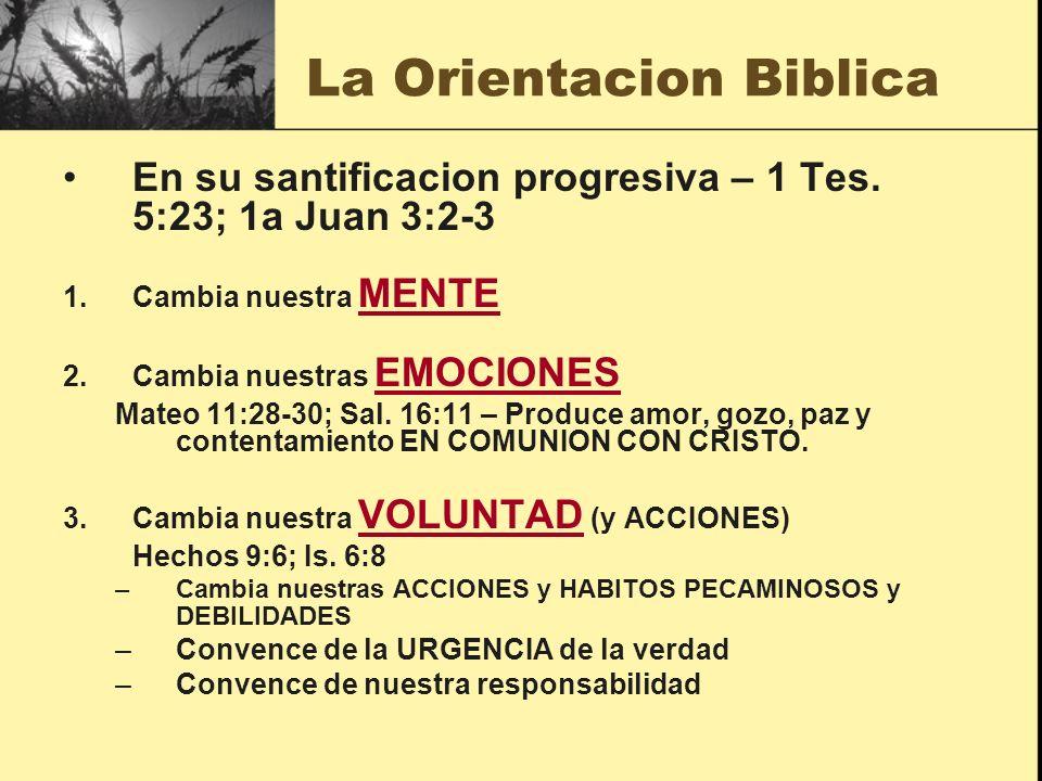 La Orientacion Biblica