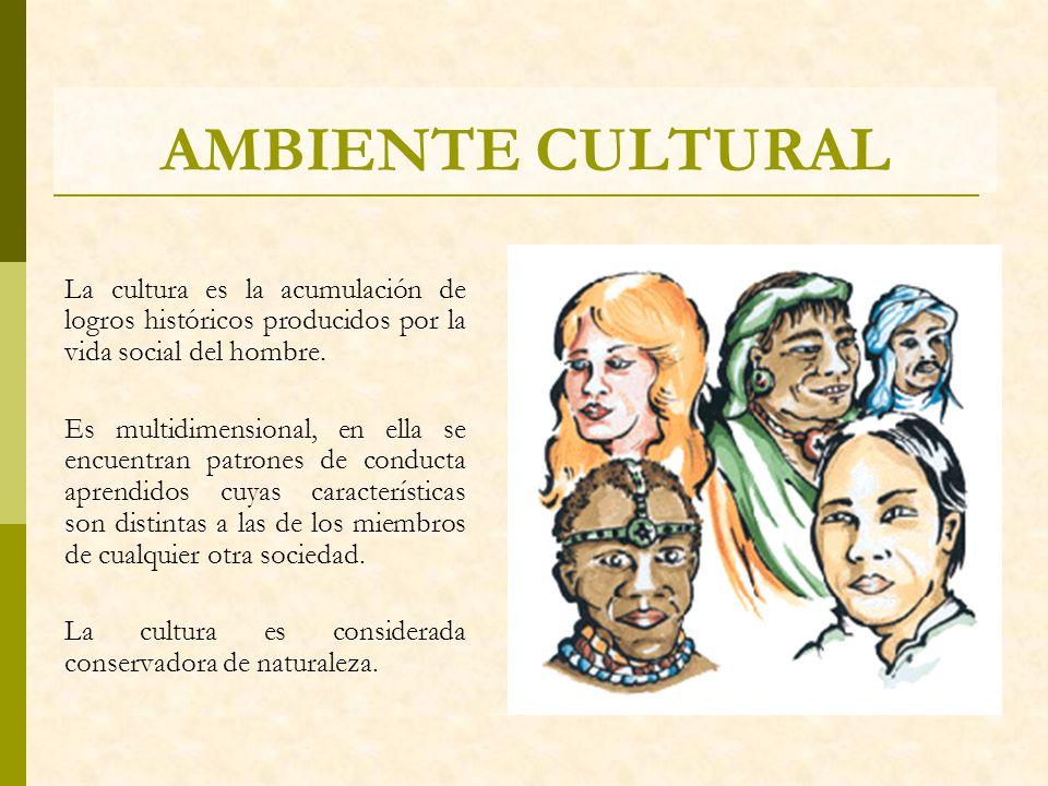 AMBIENTE CULTURAL La cultura es la acumulación de logros históricos producidos por la vida social del hombre.