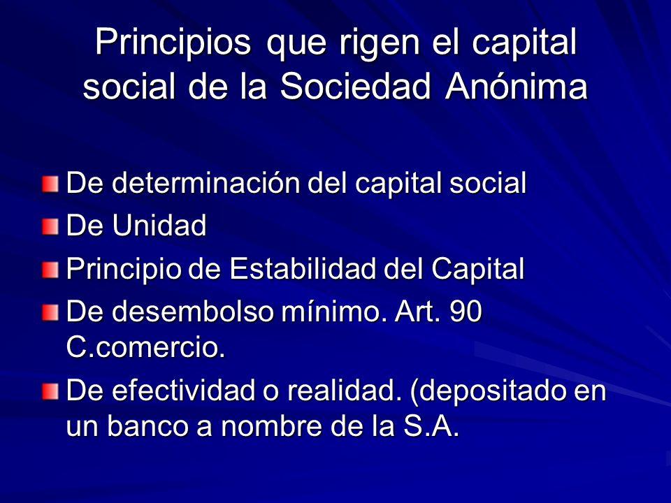 Principios que rigen el capital social de la Sociedad Anónima