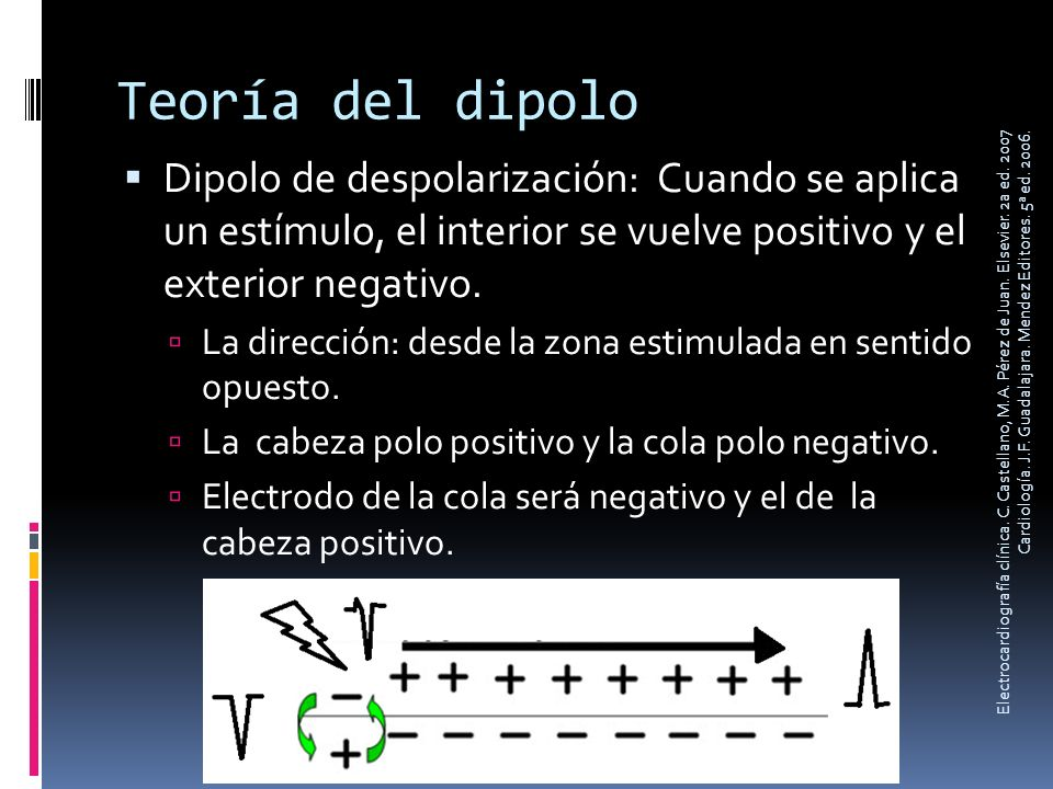 Teoría del dipolo Dipolo de despolarización: Cuando se aplica un estímulo, el interior se vuelve positivo y el exterior negativo.
