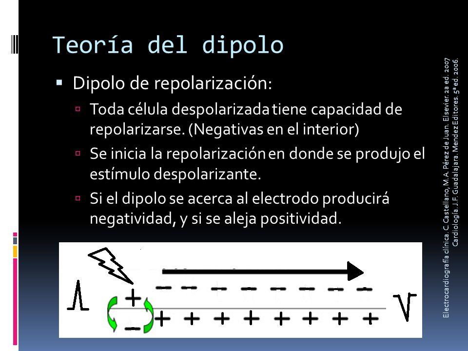 Teoría del dipolo Dipolo de repolarización: