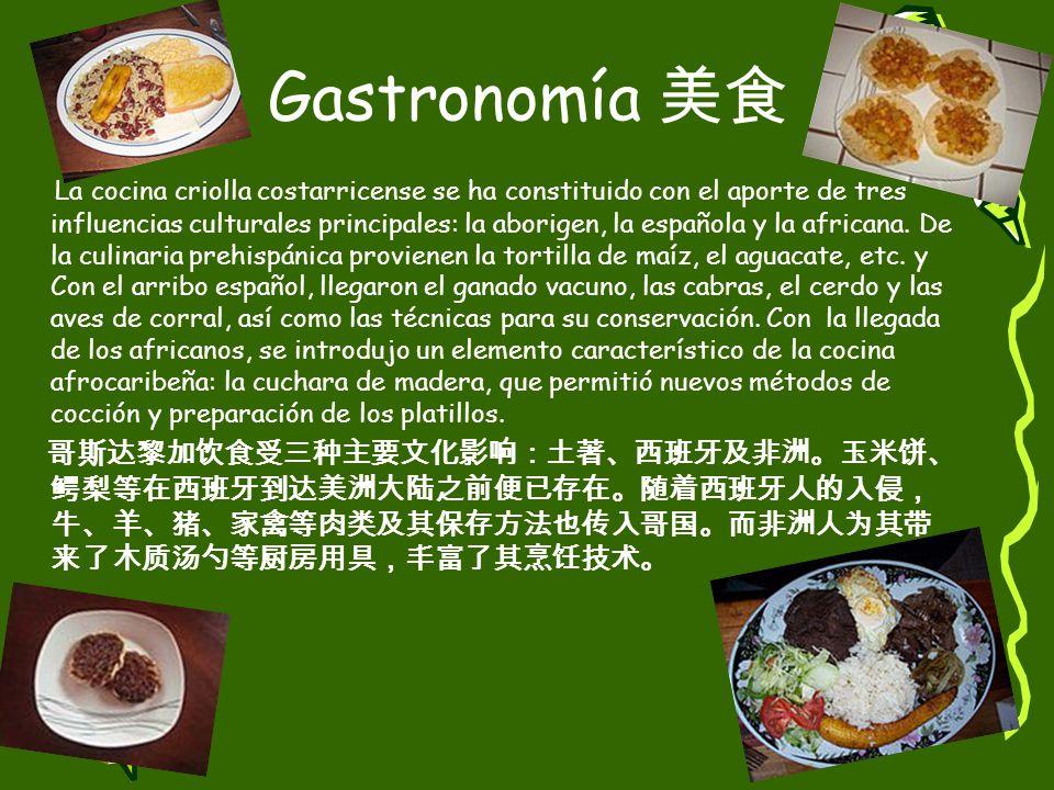 Gastronomía 美食