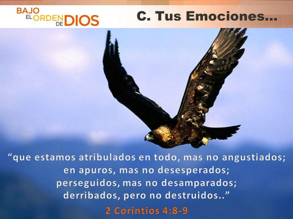 C. Tus Emociones…