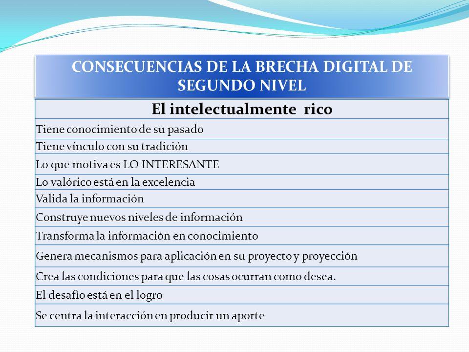 CONSECUENCIAS DE LA BRECHA DIGITAL DE SEGUNDO NIVEL