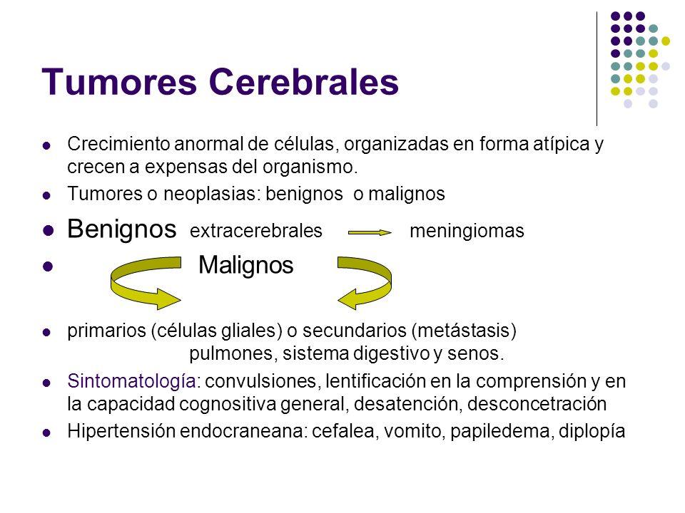 Tumores Cerebrales Benignos extracerebrales meningiomas Malignos