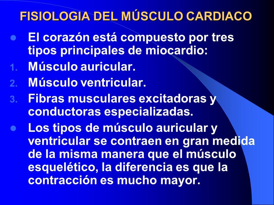 Fisiología Diferencia Imagen - Budra