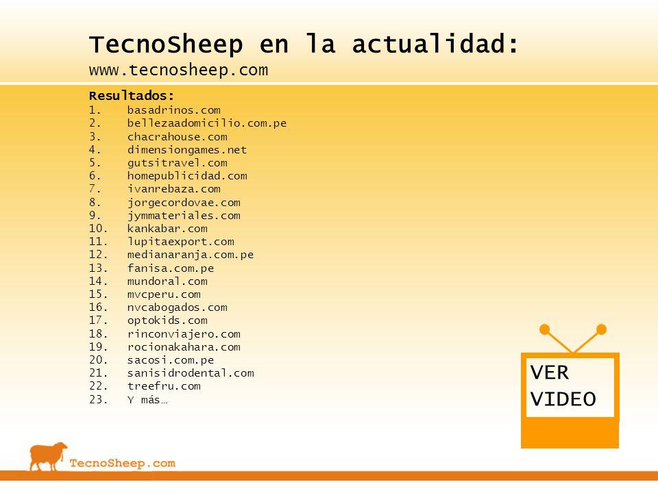 TecnoSheep en la actualidad: www.tecnosheep.com