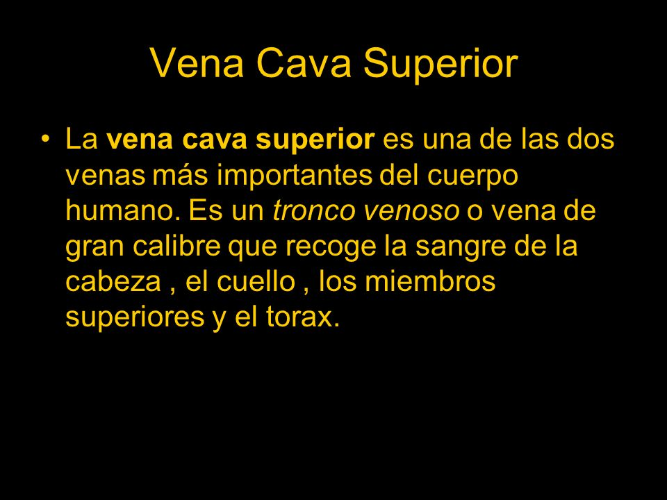 Vena Cava Superior