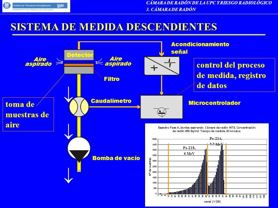 SISTEMA DE MEDIDA DESCENDIENTES
