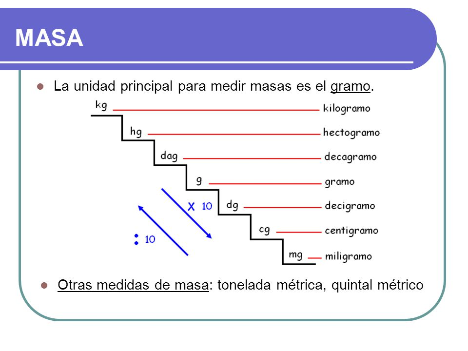 MASA La unidad principal para medir masas es el gramo.
