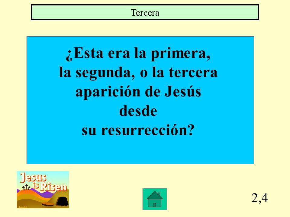 ¿Esta era la primera, la segunda, o la tercera aparición de Jesús