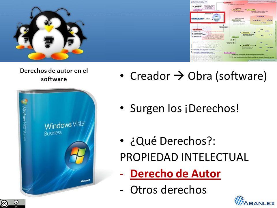 Derechos de autor en el software