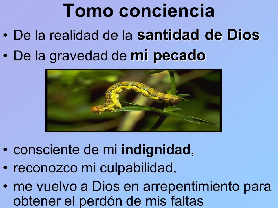 Tomo conciencia De la realidad de la santidad de Dios