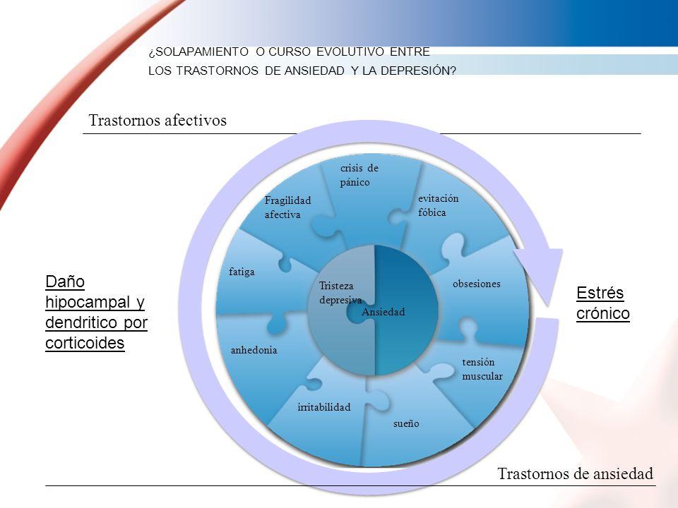 Daño hipocampal y dendritico por corticoides Estrés crónico