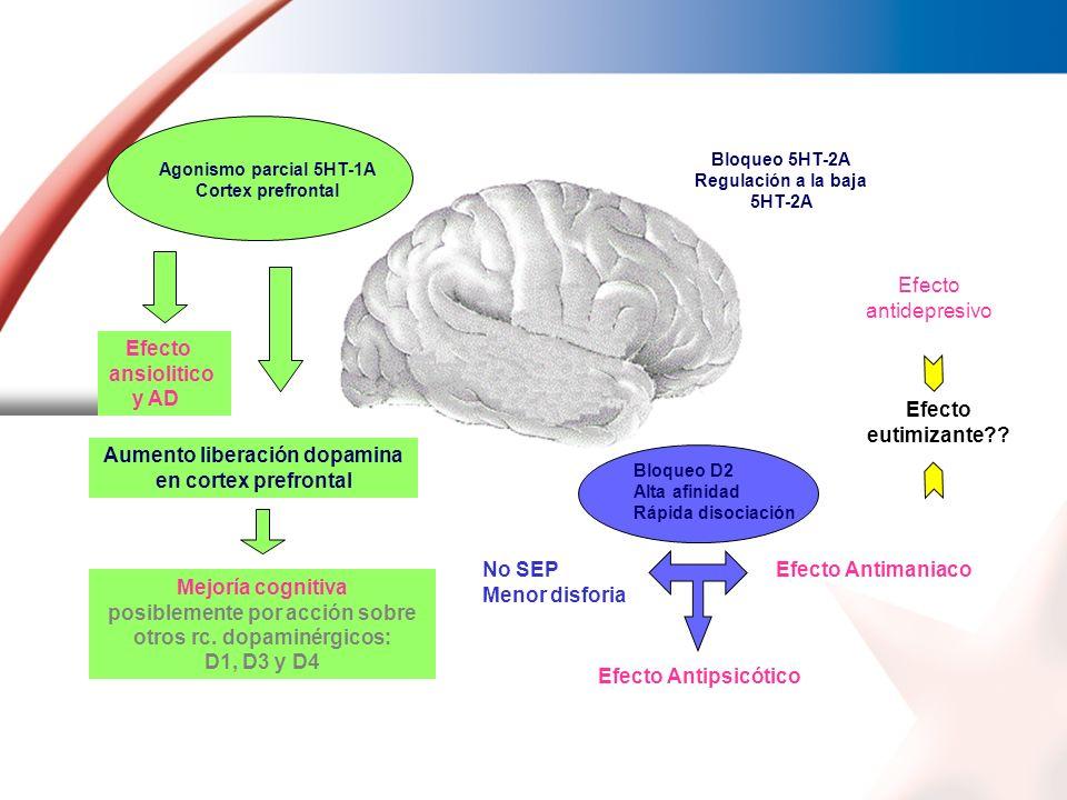 Aumento liberación dopamina en cortex prefrontal
