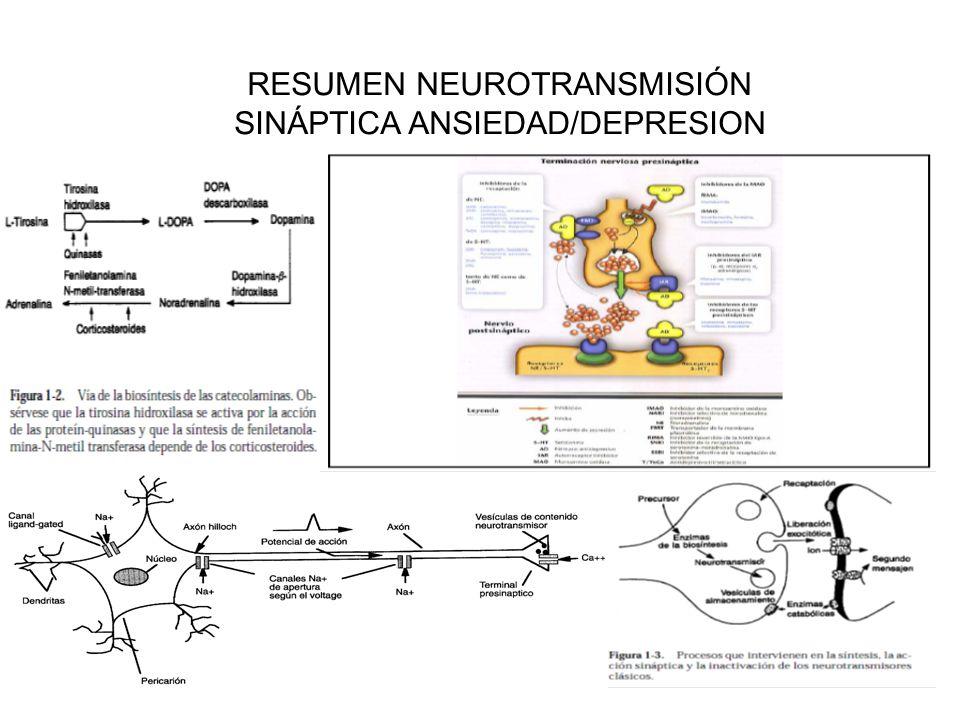 RESUMEN NEUROTRANSMISIÓN SINÁPTICA ANSIEDAD/DEPRESION