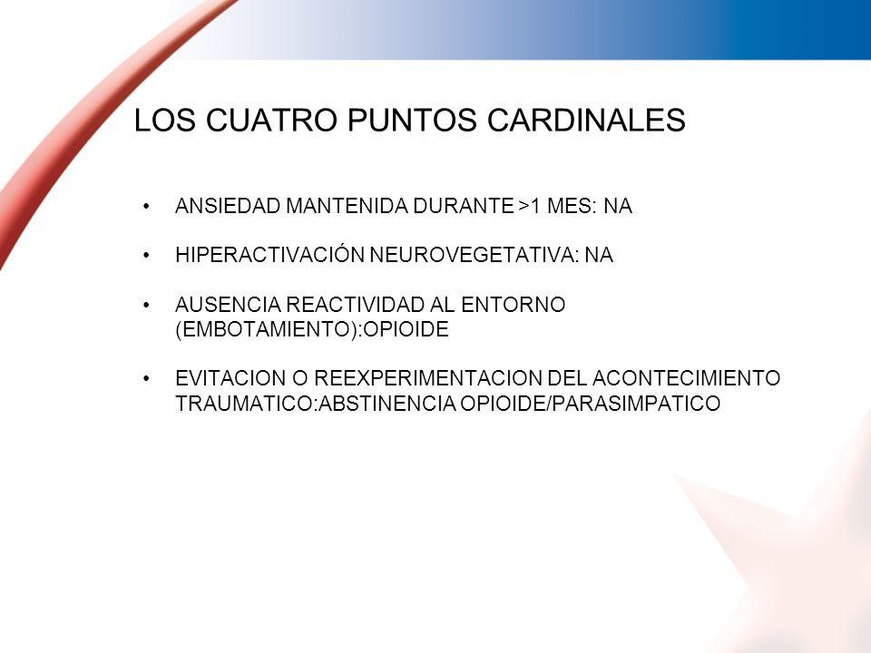 LOS CUATRO PUNTOS CARDINALES