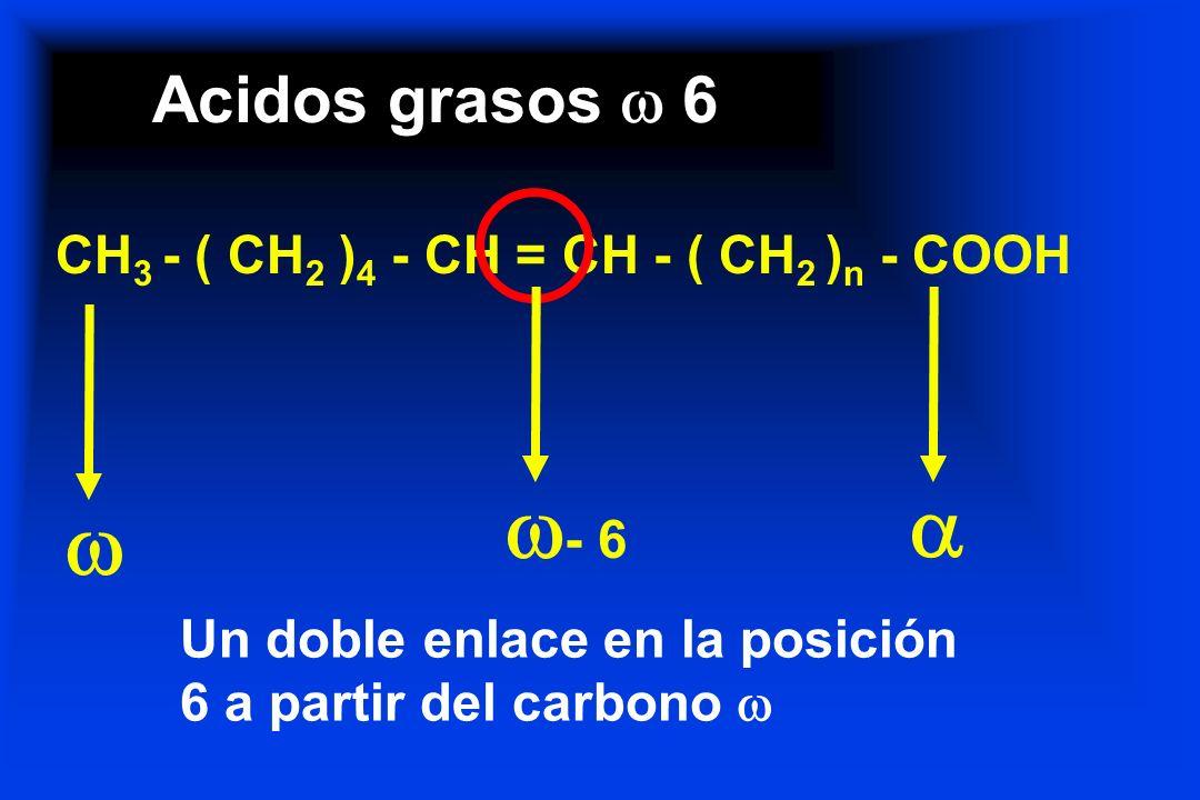 - 6   Acidos grasos  6 CH3 - ( CH2 )4 - CH = CH - ( CH2 )n - COOH