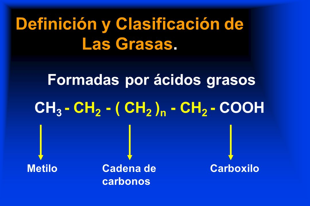 Definición y Clasificación de Las Grasas.