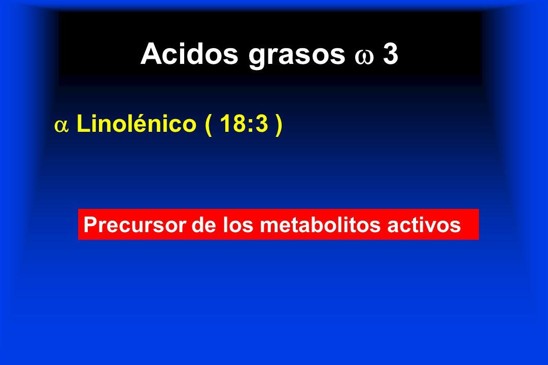 Acidos grasos  3  Linolénico ( 18:3 )