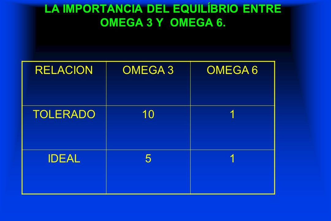 LA IMPORTANCIA DEL EQUILÍBRIO ENTRE OMEGA 3 Y OMEGA 6.