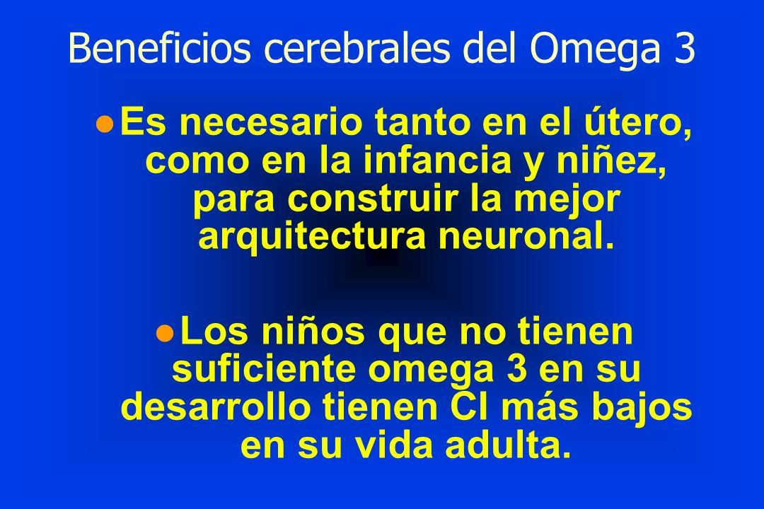 Beneficios cerebrales del Omega 3