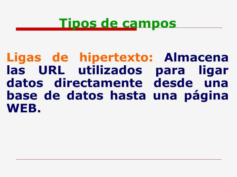 Tipos de campos Ligas de hipertexto: Almacena las URL utilizados para ligar datos directamente desde una base de datos hasta una página WEB.