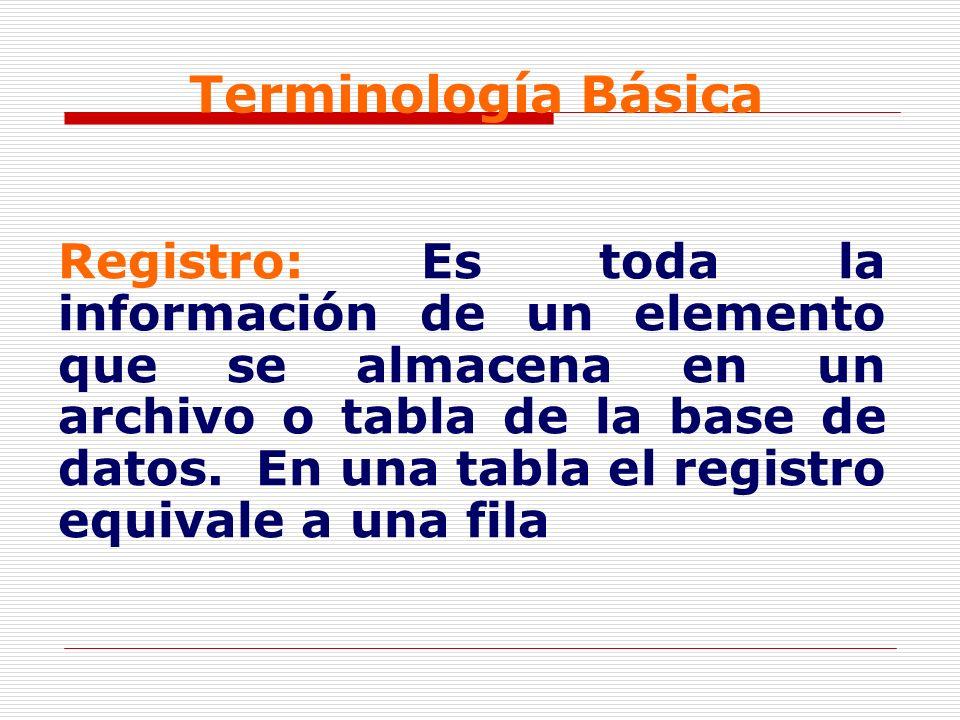Terminología Básica