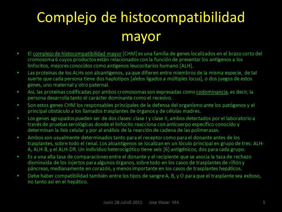 Complejo de histocompatibilidad mayor